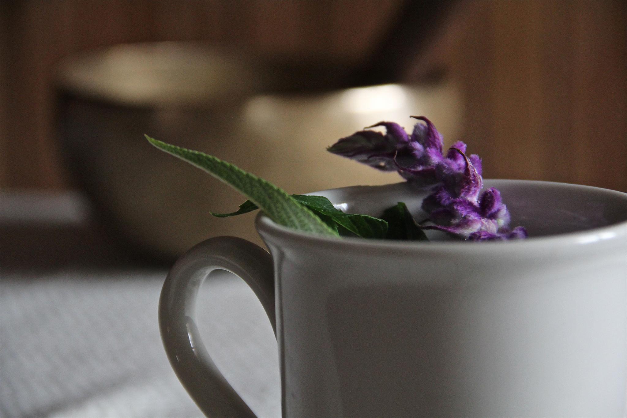 lavenderCup